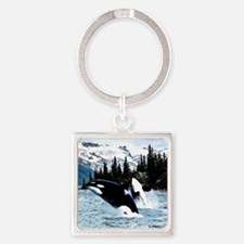 Cute Orca killer whale Square Keychain