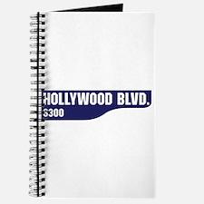 Hollywood Boulevard, Los Angeles, CA Journal