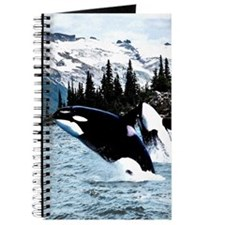 Leaping Killer Whales Journal