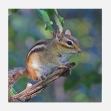 Cute Chipmunks Tile Coaster