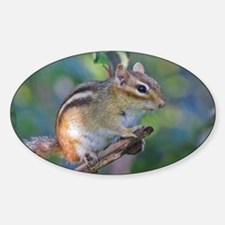 Cute Chipmunk Decal