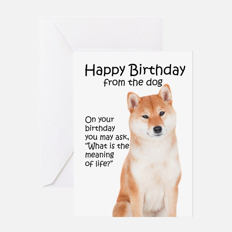 Funny Dog Birthday Greeting Cards – Funny Dog Birthday Cards