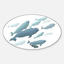 Beluga Whale Decal Marine Wildlife Art Decal