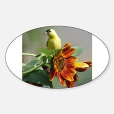 Goldfinch in a Sunflower Decal