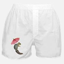 Squirrel Pink Parasol Boxer Shorts