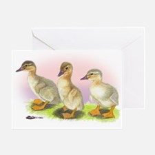 Buff Ducklings Greeting Card