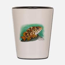 Gopher Rockfish Shot Glass