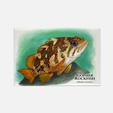 Gopher Rockfish Rectangle Magnet