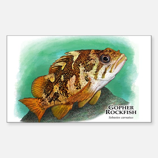 Gopher Rockfish Sticker (Rectangle)