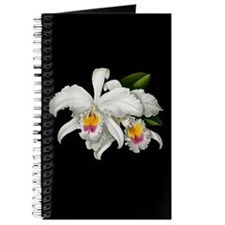 TROPICAL ORCHIDS Journal