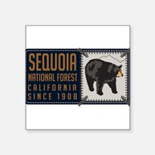 "Funny California bears Square Sticker 3"" x 3"""