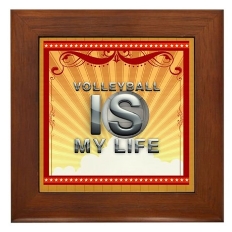 Volleyball Is Life