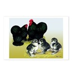 Black Cochin Family Postcards (Package of 8)