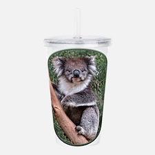 Helaine's Koala 5 Acrylic Double-wall Tumbler