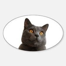 chartreux Decal