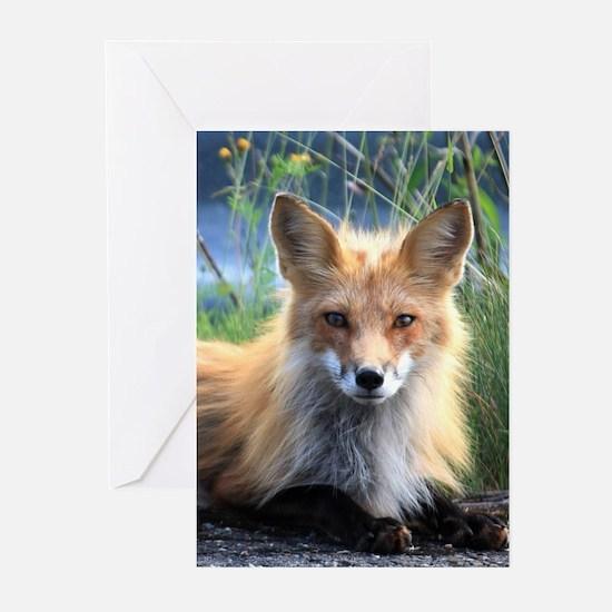 Fox Greeting Cards