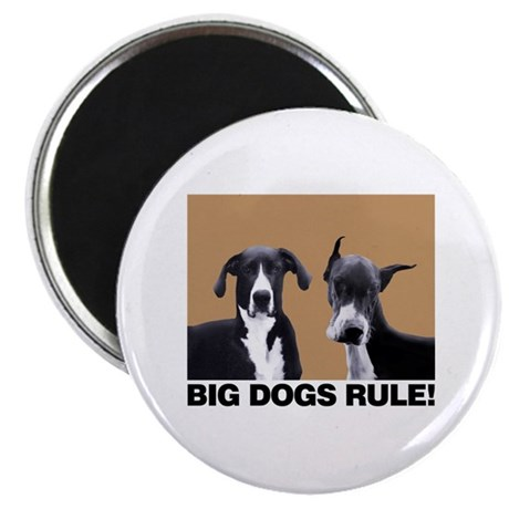 BIG DOGS RULE! Magnet