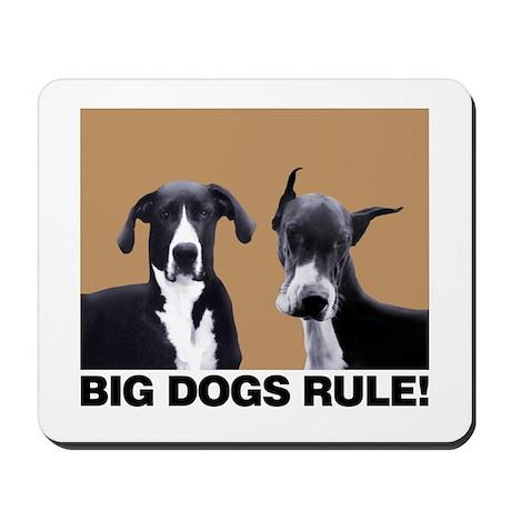 BIG DOGS RULE! Mousepad