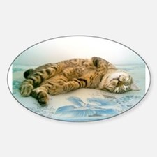 japanese bobtail brown tabby Decal