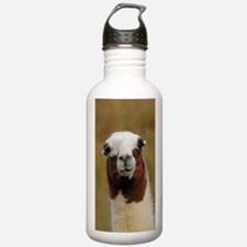 Cute Andes mountains Water Bottle