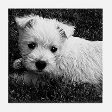 Westie Puppy Tile Coaster