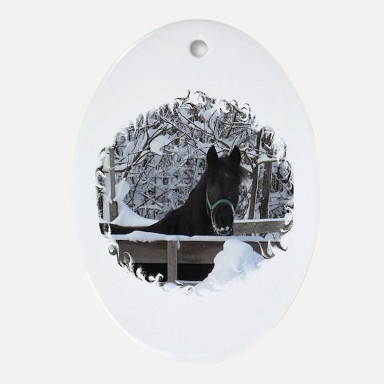 Cute Morgan horse Oval Ornament