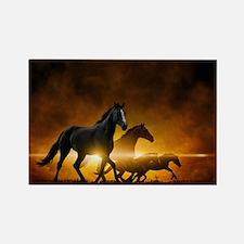 Wild Black Horses Rectangle Magnet