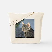 Animals tote cat Tote Bag