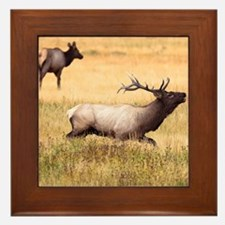 THE GREAT OUTDOORS Framed Tile