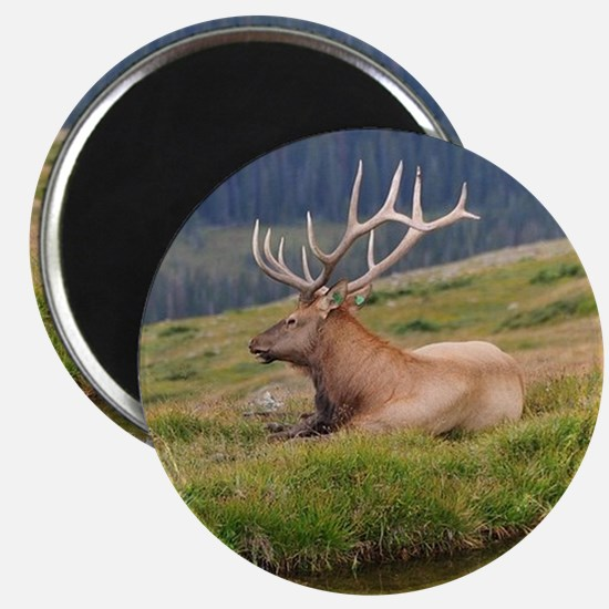 THE GREAT OUTDOORS Magnet