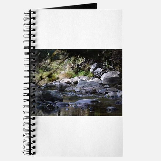 woodland stream Journal