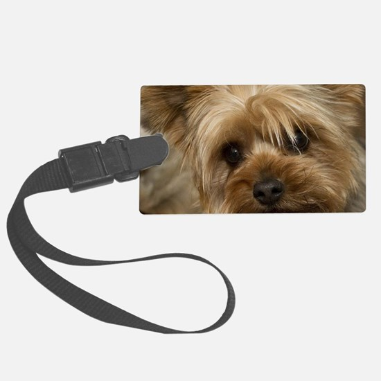 Yorkie Puppy Large Luggage Tag