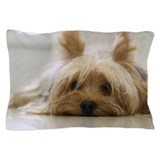 Yorkie Pillow Cases