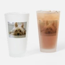 Yorkie Dog Drinking Glass