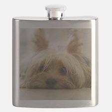 Yorkie Dog Flask