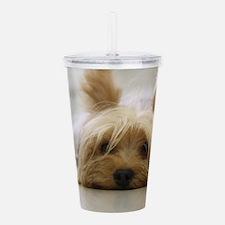 Yorkie Dog Acrylic Double-wall Tumbler