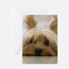 Yorkie Dog Greeting Cards