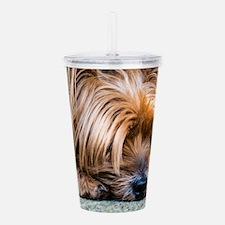 Yorkshire Terrier Dog Acrylic Double-wall Tumbler