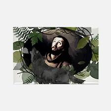 Saint Francis s Magnets