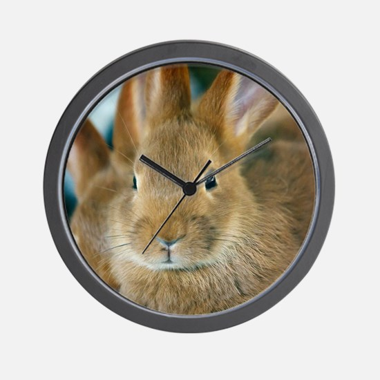 Animal Bunny Cute Ears Easter Wall Clock