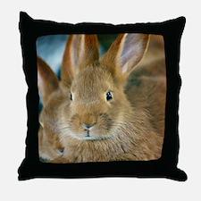 Animal Bunny Cute Ears Easter Throw Pillow