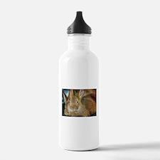 Animal Bunny Cute Ears Water Bottle