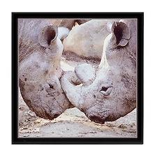 Rhino Love Tile Coaster