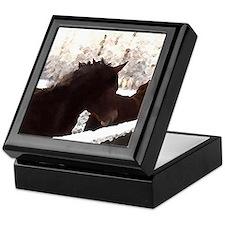 Horse Gifts Holiday Keepsake Box, pony lover gifts