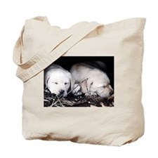 Labrador puppy lover Tote Bag