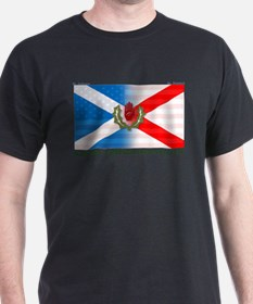 Cute Northern ireland flag T-Shirt