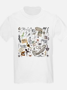 Cute Narwhale T-Shirt