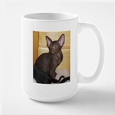 oriental shorthair kitten Mugs