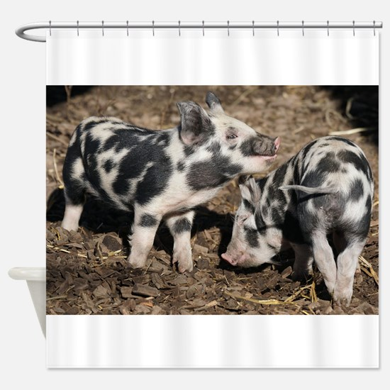 Pigs Shower Curtain