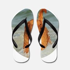 Golden Retriever Flip Flops